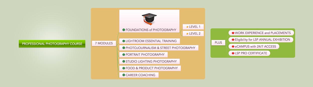 LSP-PRO-diagram